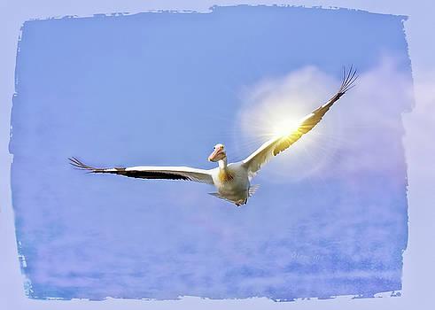 On the Angel's Wings by OLenaArt Lena Owens
