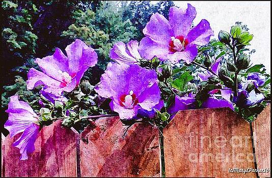 On The Fence  by MaryLee Parker