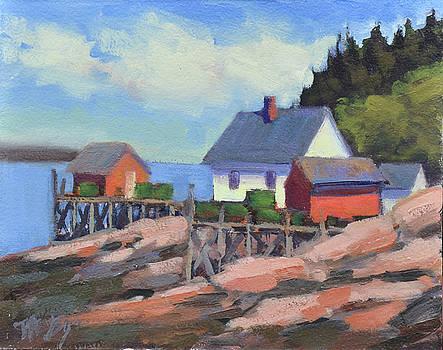 On the Island by Mary Byrom