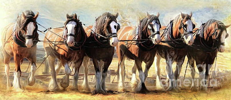 On The Plough by Trudi Simmonds