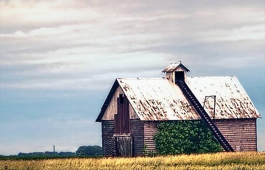 On the Prairie - Illinois Corncrib Barn by Chrystyne Novack
