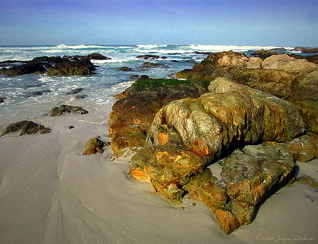 Joyce Dickens - On The Rocks Asilomar Style