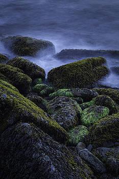 On the Rocks by Nicole Robinson