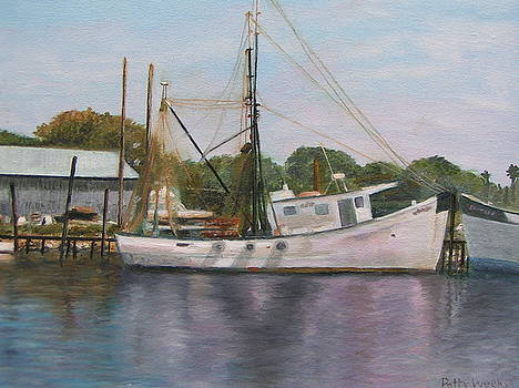 On The San Sebastian River by Patty Weeks