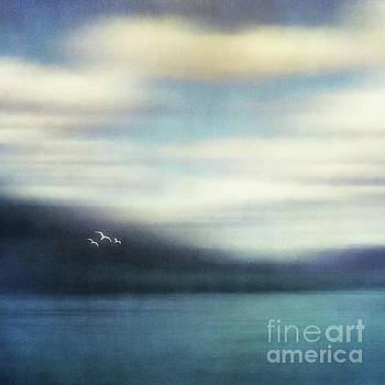 On the wing by Priska Wettstein