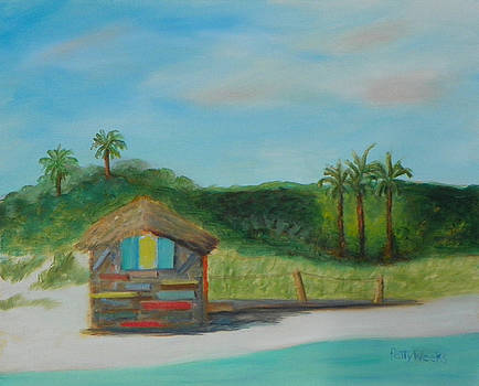 One Day at Vilano Beach by Patty Weeks