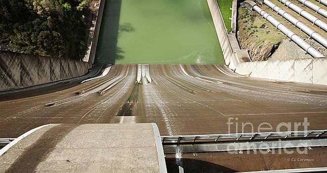 One Heckuva Waterslide by Carol Lynn Coronios