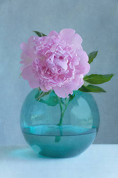 Pink Peony by Colleen Farrell