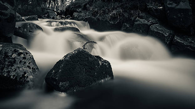 one of these little streams in the Harz by Andreas Levi