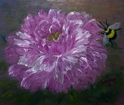 One Peony and One Bumblebee by Sandra Maddox