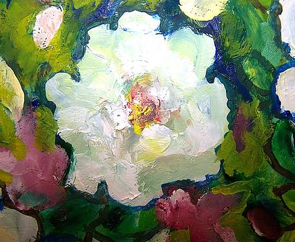 Patricia Taylor - One White Fluffy Rose