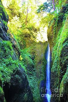 Oneonta Gorge Vertical  by AR Annahita