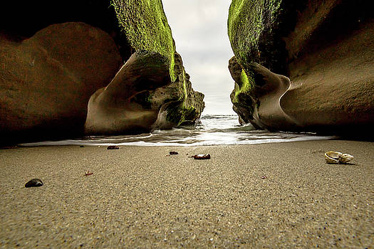 Only at Low Tide by Ryan Weddle