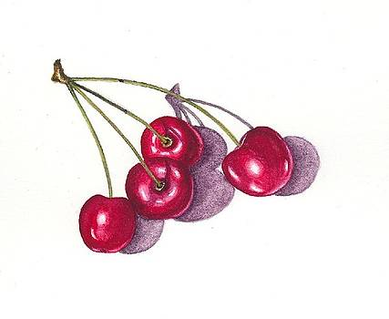 Ontario Cherries by Elizabeth H Tudor