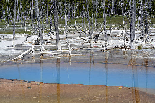 Opalescent Pool in Yellowstone National Park by Bruce Gourley