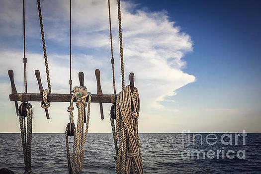 Open Seas by Joan McCool