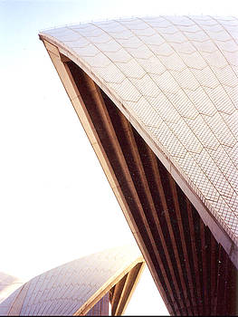 Opera House Sale by Darren Stein