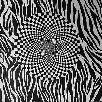 Optical Vortex by Douglas Fromm