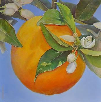 Orange au Soleil by Muriel Dolemieux