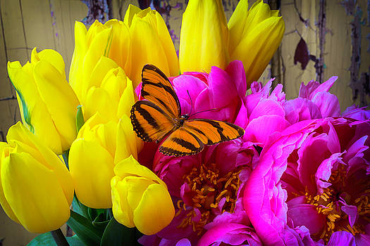 Orange Butterfly On Peony by Garry Gay