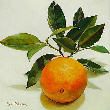 Orange cueillie by Muriel Dolemieux