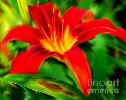 Orange Daylily by Smilin Eyes  Treasures
