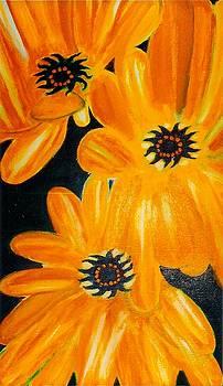 Orange Delight by Robert Bray