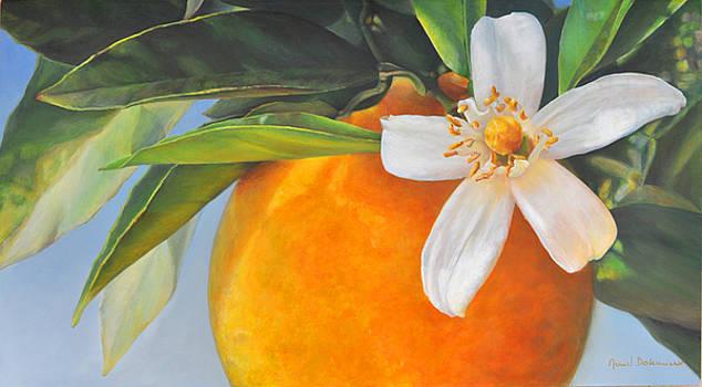 Orange en Fleurs by Muriel Dolemieux
