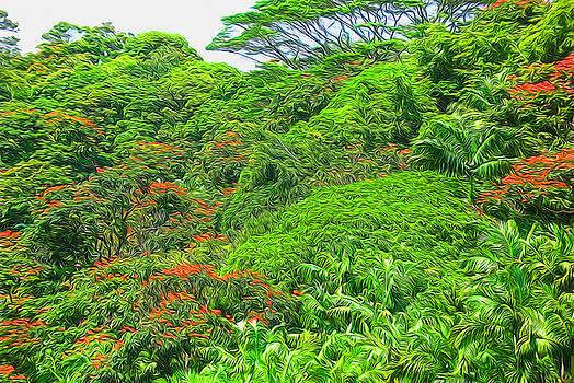 Cindy Boyd - Orange Flowering Trees on a Hawaiian Hillside