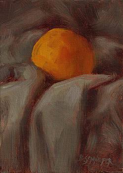 Orange In Cloth by Brandon Schaefer
