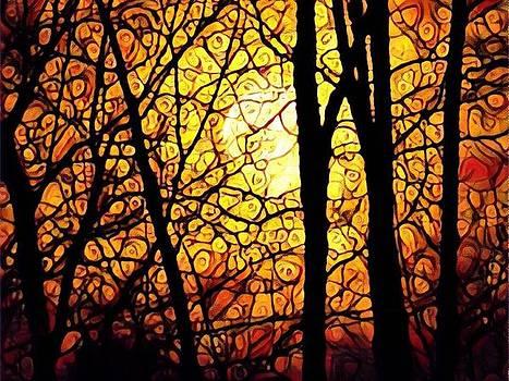 Orange Moon by Valeria Donaldson