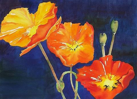 Orange Poppies II by Celene Terry