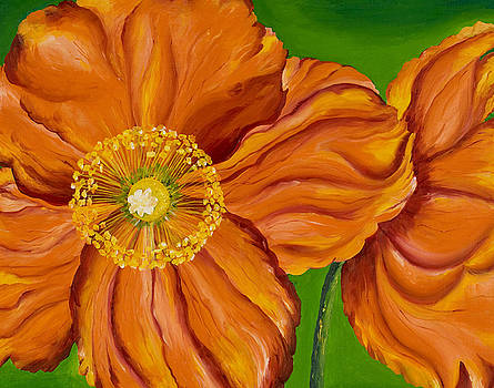 Orange Poppies by Sweta Prasad