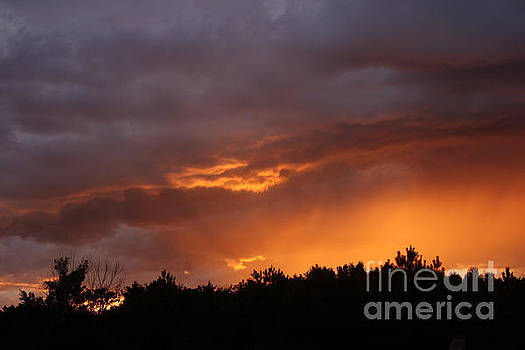 Orange Rays by Kathy DesJardins