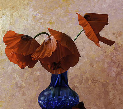 Orange Red Poppies in a Blue Vase by Diane Schuster