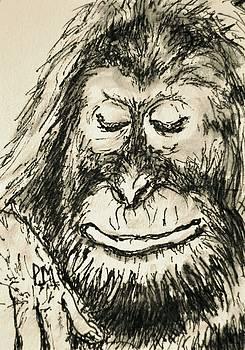 Orangutan by Pete Maier