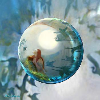 Robin Moline - Orbital Flight