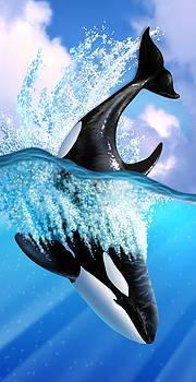 Orca 2 by Jerry LoFaro