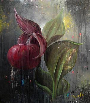 Orchid Bulb by Matt Truiano