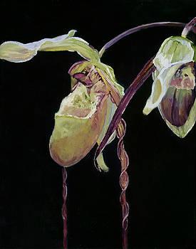 Orchid I by Carol Hopper