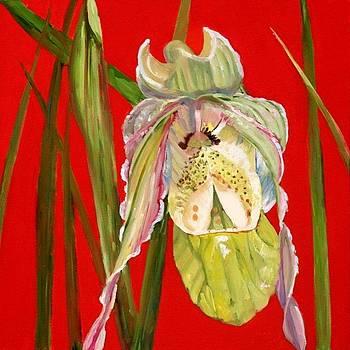 Orchid II by Carol Hopper