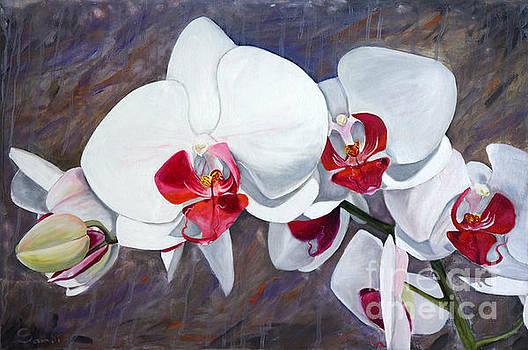 Orchids in Oil by Sandi Baker