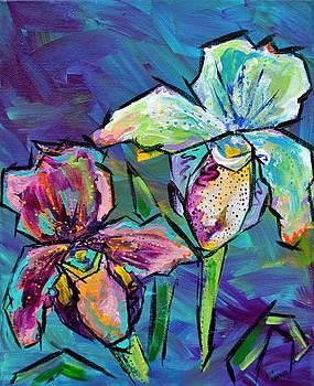 Orchids by Lee Walker