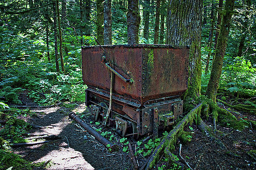 Ore Cart in the Forest by Cathy Mahnke