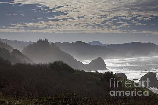 Oregon Coast #4 by Timothy Johnson