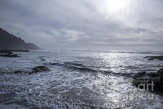 Oregon Coast by Billie-Jo Miller