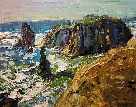 Oregon Coast Ii by Brian Simons