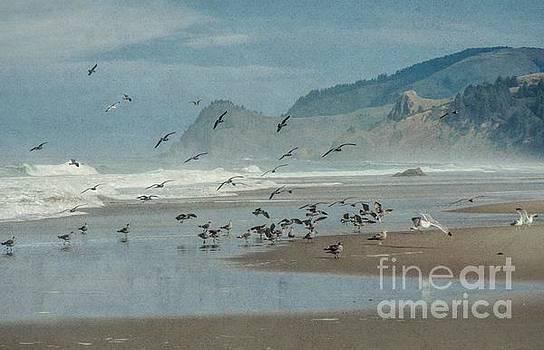 Oregon Coast, Winter by Peggy J Hughes