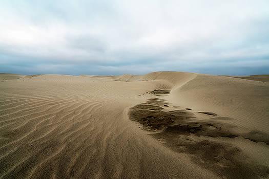 Oregon Dune Wasteland 1 by Ryan Manuel