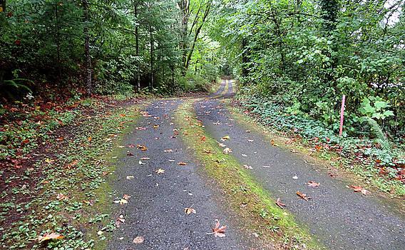 Oregon Fall Day by Anne Mott